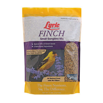 Lyric Finch Canary Grass Seed Wild Bird Food 5 lb.