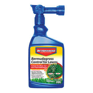 BioAdvanced  Selective Weed Killer  RTS Hose-End Concentrate  32 oz.