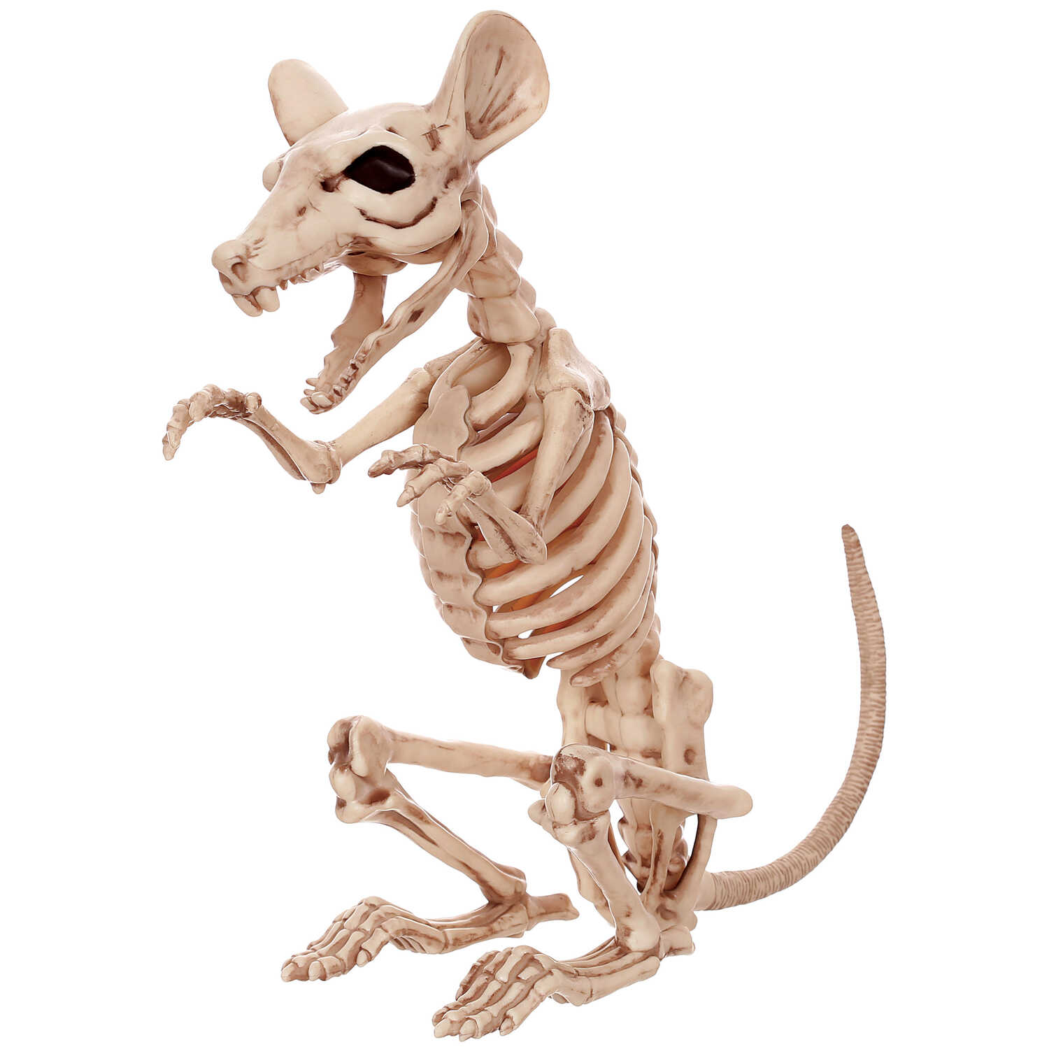 Seasons USA  Skeleton Rat  Halloween Decoration  11.5 in. H x 4.5 in. W x 8 in. L 1 each
