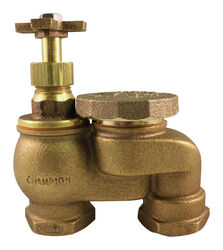 Champion Anti-Siphon Valve 3/4 in. 150 psi