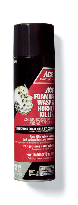 Ace  Wasp and Hornet Killer  17.5 oz.