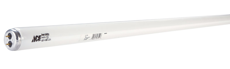 Ace  40 watts T12  48 in. Cool White  Fluorescent Bulb  Linear  1 pk 2900 lumens