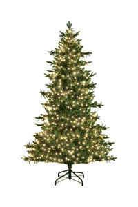Holiday Bright Lights  National Lampoon's  Warm White  Prelit 7 ft. LED  Artificial Tree  3080 light