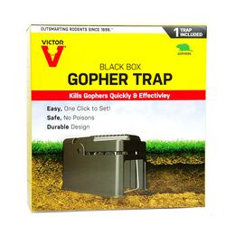 Victor  Black Box  Choker Loop  Animal Trap  For Gophers 1 pk