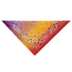 Aria Purple/Red Paisley Bandana