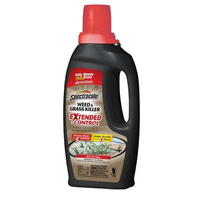 Spectracide  Extended Control  Weed and Grass Killer  Concentrate  32 oz.