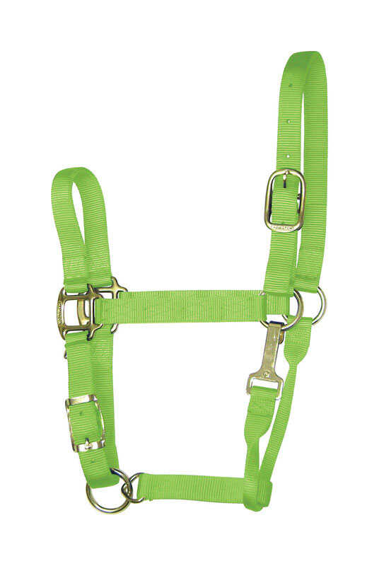 Hamilton  Nylon  Average  Halter