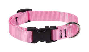 Lupine Pet  Basic Solids  Pink  Nylon  Dog  Adjustable Collar