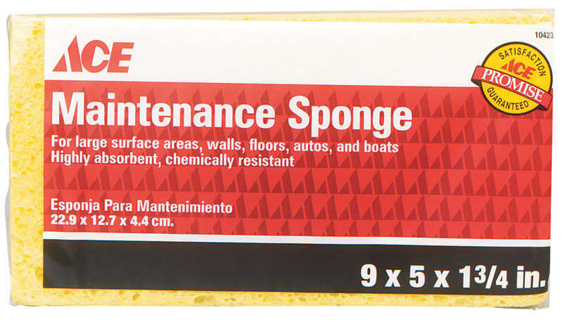 Ace  Maintenance  Delicate, Light Duty  Sponge  7.8 in. L 1 pk