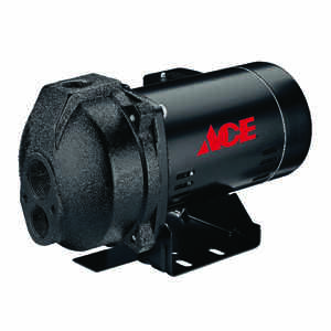 Ace  Cast Iron  Convertible Jet Pump  1/2 hp 9  115 volts