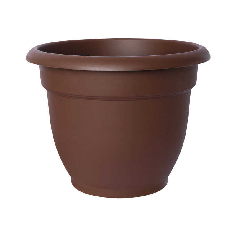 Bloem  8.5 in. H x 10 in. Dia. Resin  Ariana  Chocolate  Planter