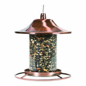Perky-Pet  Wild Bird  Copper  2 lb. Bird Feeder  1 ports