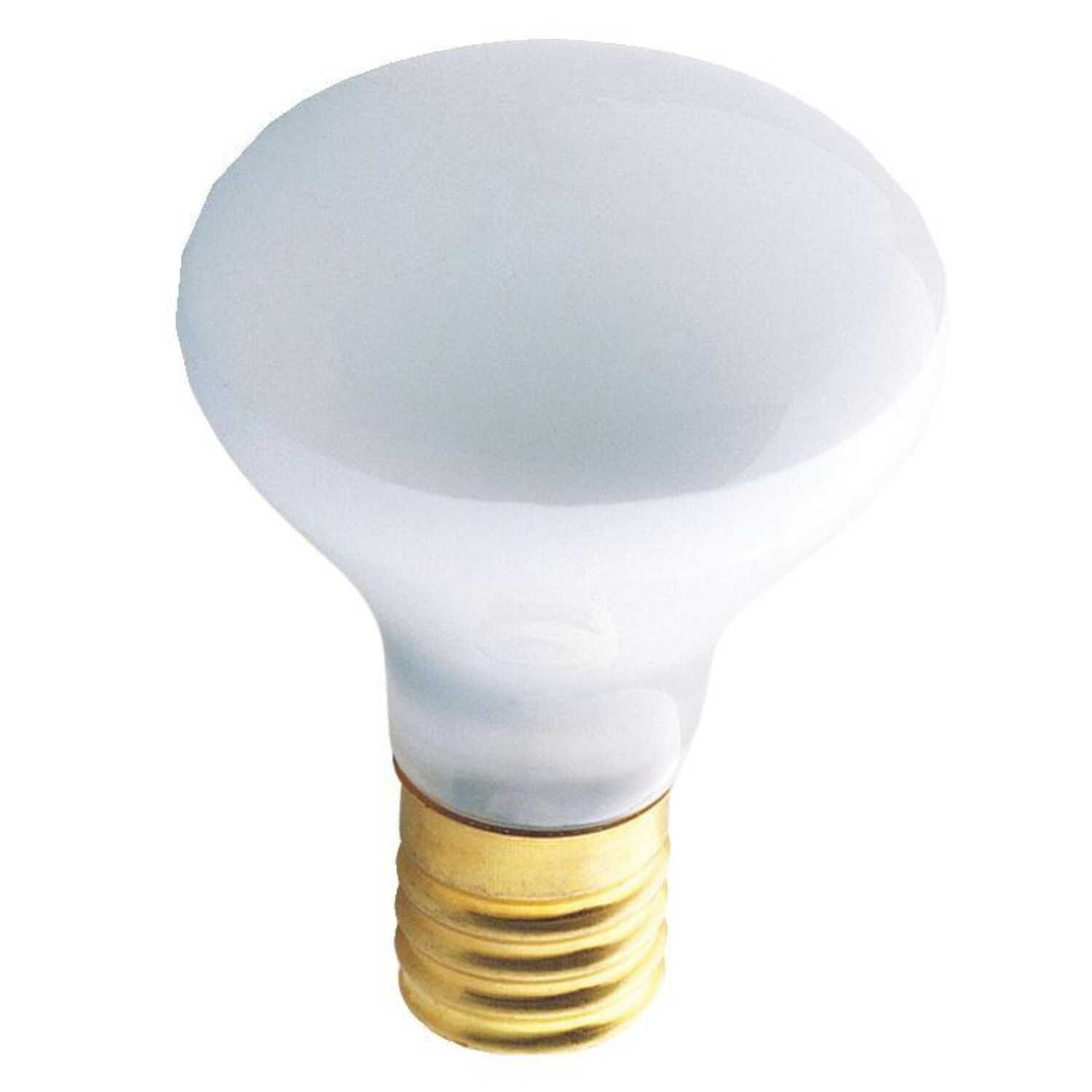 Westinghouse  40 watts R14  Incandescent Bulb  185 lumens White  Spotlight  1 pk