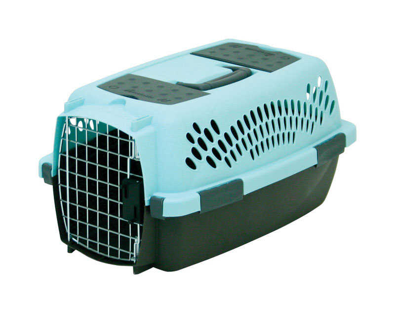 Petmate  Plastic  Pet Porter  10.8 in. H