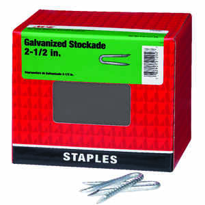 Ace  2-1/2 in. L Galvanized  Steel  Fence Staples  5 lb.