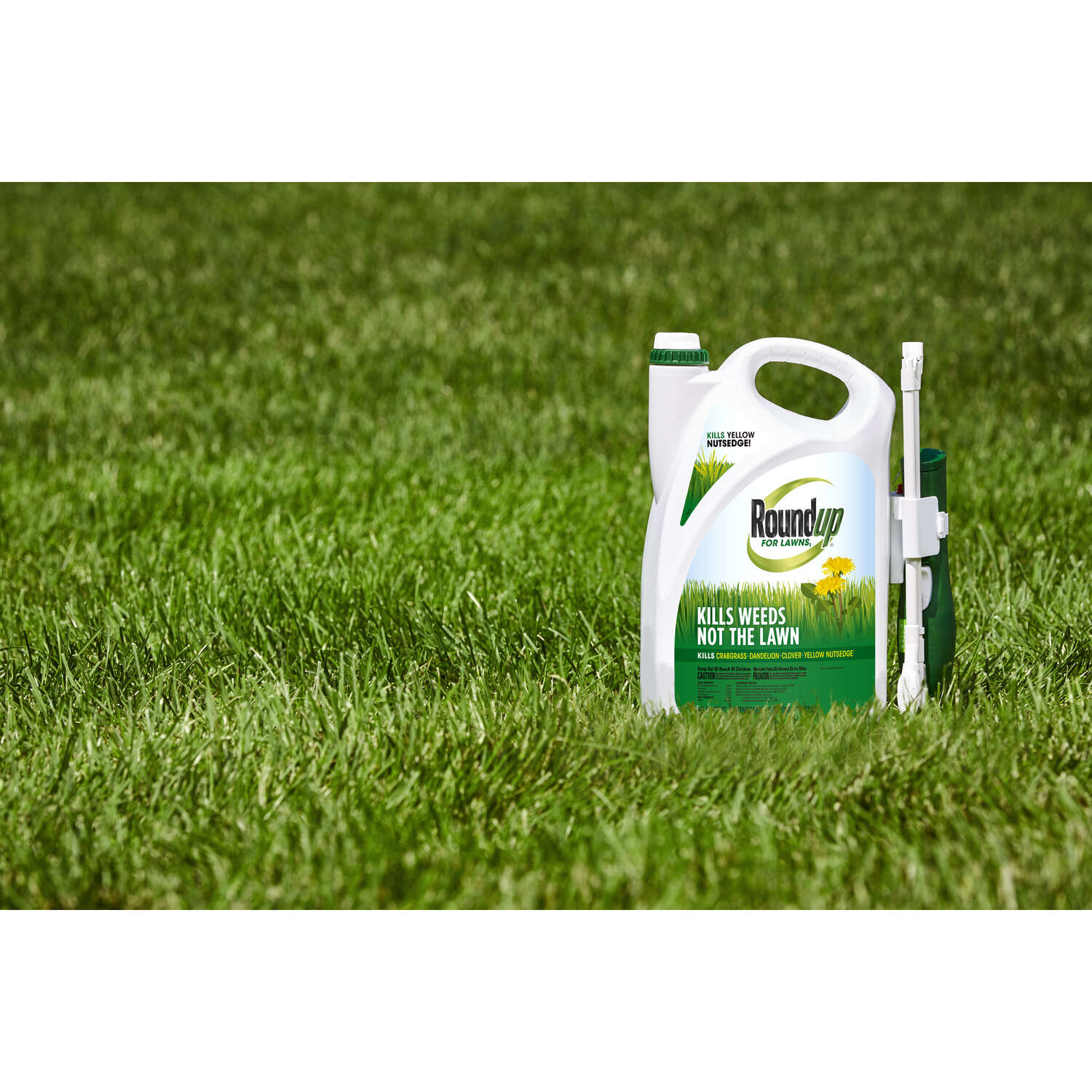 Roundup  For Lawns  RTU Liquid  Weed Killer  1.33 gal.