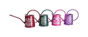 Panacea  Assorted  3/4 gal. Steel  Watering Can