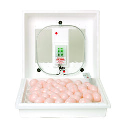 Little Giant Plastic Egg Incubator