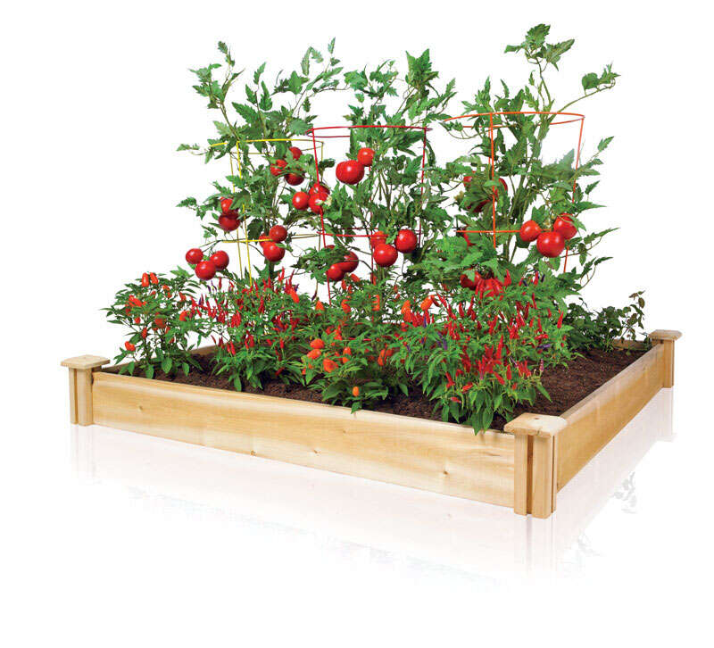 Greenes  5.5 in. H x 48 in. W x 48 in. L Brown  Cedar  Raised Bed  Planter