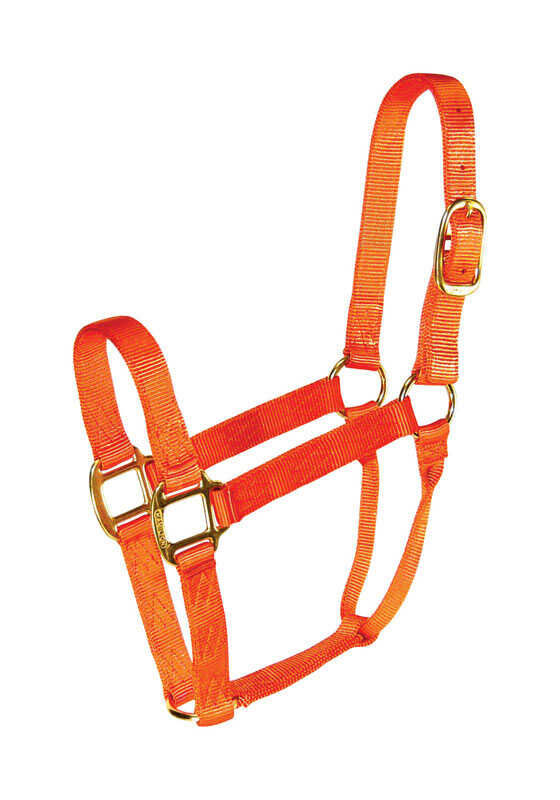 Hamilton  Halter  Average  Nylon