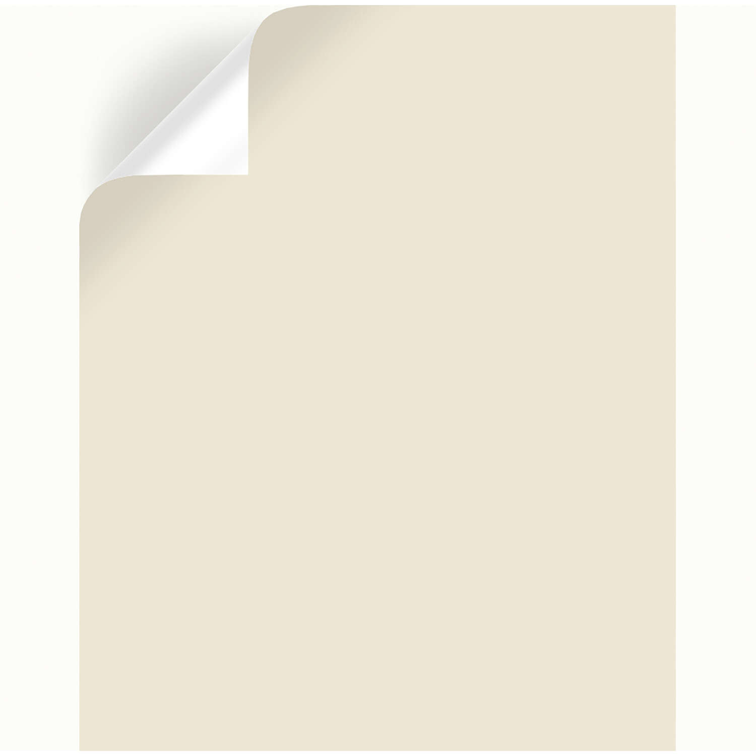 Magnolia Home by Joanna Gaines  Carter Cr�me  Peel & Stick Color Sample