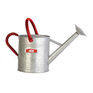 Ace  Gray  2 gal. Steel  Watering Can