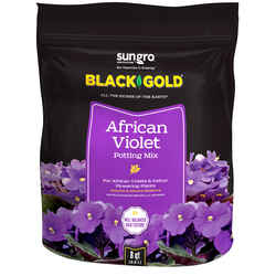 Black Gold  African Violet  Organic Potting Soil  8 qt.