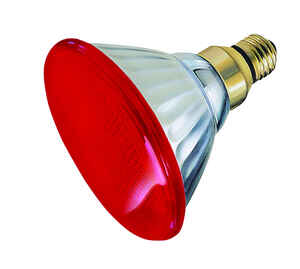 Ace  100 watts PAR38  Incandescent Bulb  Red  1 pk Floodlight
