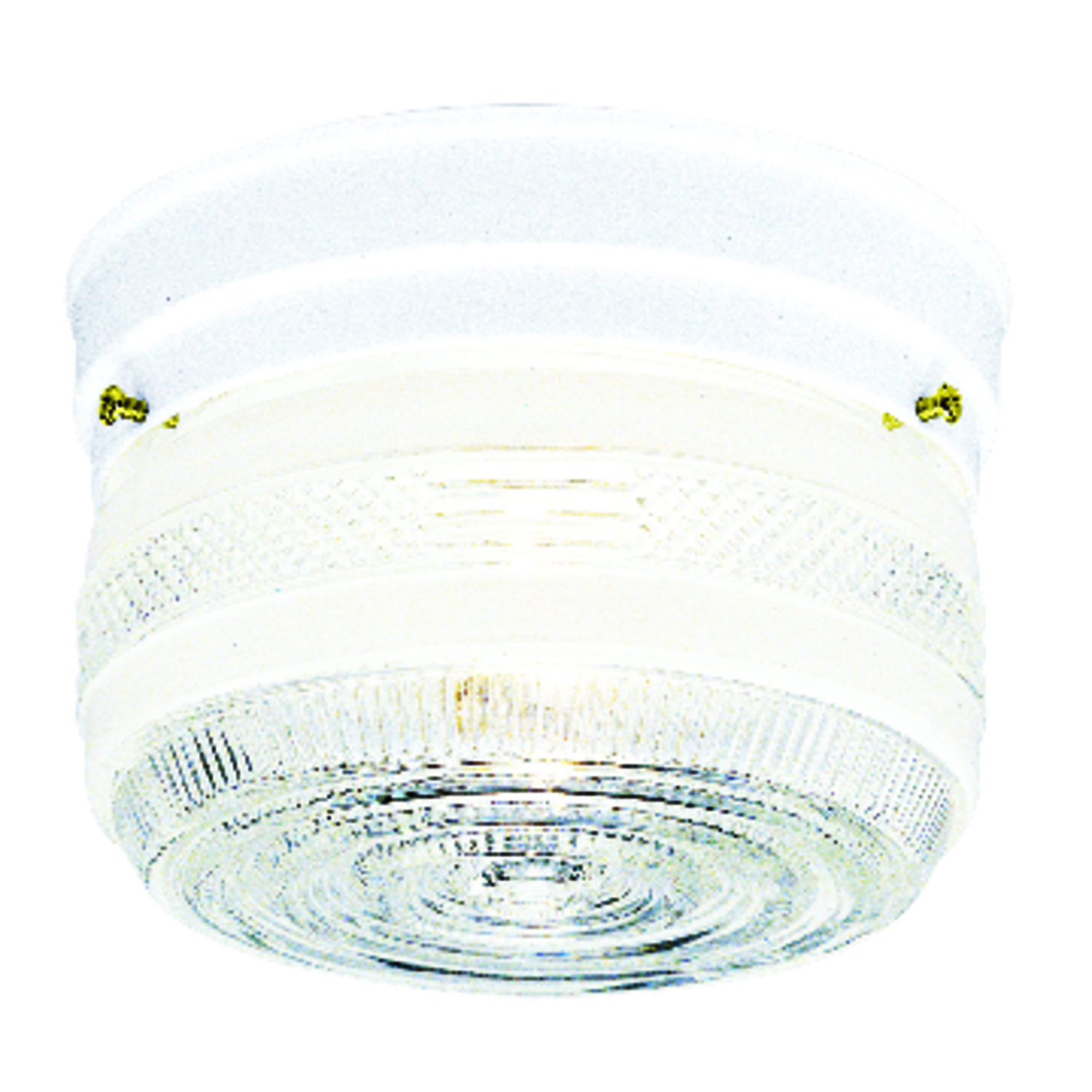 Westinghouse  6.75 in. L Ceiling Light