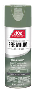 Ace  Premium  Gloss  Sage  Enamel Spray Paint  12 oz.