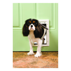 Petsafe  11 in. H x 7.5 in. W Plastic  Pet Door