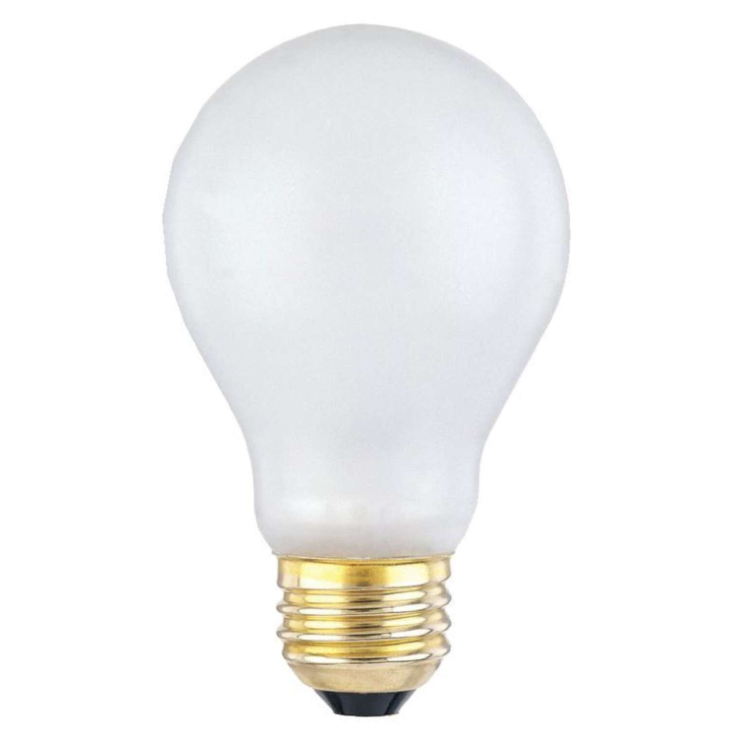 Westinghouse Toughshell 100 watt A19 Specialty Incandescent Bulb E26 (Medium) Cool White 1 pk