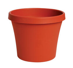 Bloem  Terrapot  17.2 in. H x 20 in. Dia. Resin  Traditional  Planter  Terracotta Clay