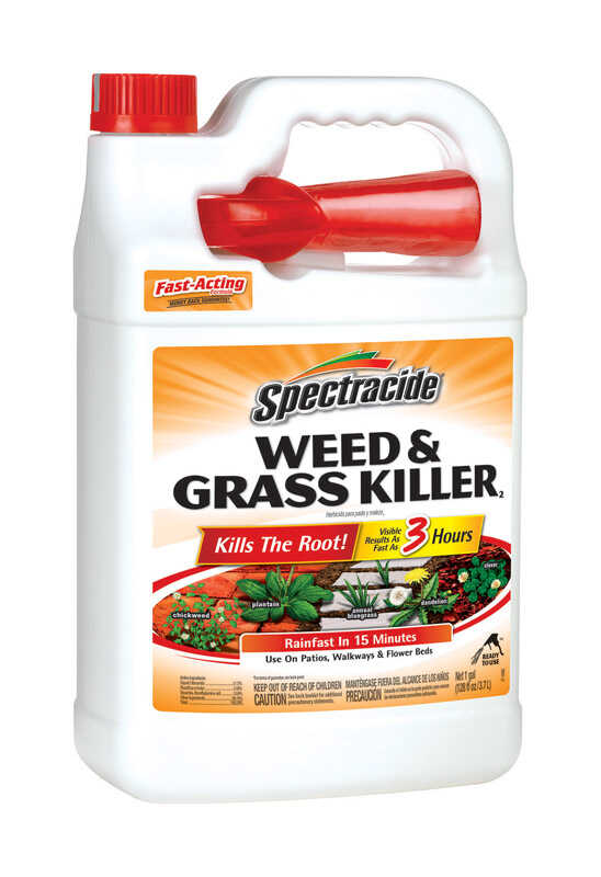 Spectracide  RTU Liquid  Weed and Grass Killer  1 gal.
