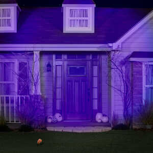 Gemmy  Led Blacklight Spotlight  Lighted Halloween Lights  4 in. W