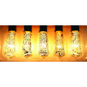 Living Accents  Edison Mercury  9 ft. Light Set  Clear