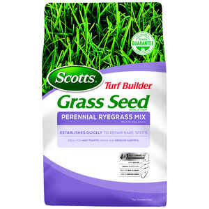 Scotts  Turf Builder  Perennial Ryegrass  Grass Seed  7 lb.