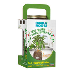 Back to the Roots  Self-Watering Planter Shishito Peppers  Grow Kit  1 pk