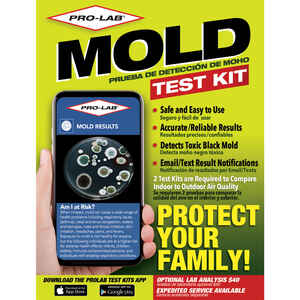 Pro-Lab  Mold Test Kit  1 pk