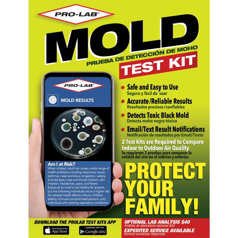 Pro Lab Mold Test Kit 1 Pk Ace Hardware