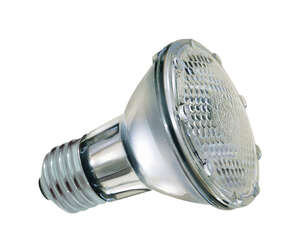 GE Lighting  38 watts PAR20  Halogen Bulb  White  1 pk 530 lumens Floodlight