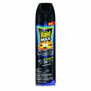 Raid  MAX  Insect Killer  12 oz.