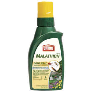 Ortho  Max Malathion  Insect Killer  32 oz.
