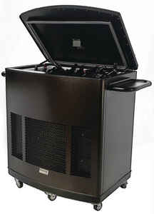 Phoenix  Patio Pal  1000 sq. ft. Portable Multi-Purpose Cooler