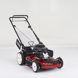 Toro  Recycler with Honda Engine  22 in. 160 cc Self-Propelled  Lawn Mower