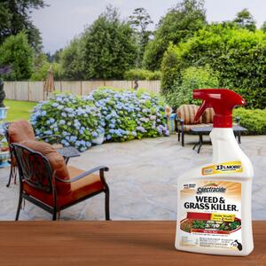 Spectracide  Weed and Grass Killer  RTU Liquid  32 oz.
