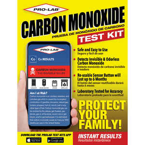 Pro-Lab  Carbon Monoxide Test Kit  1 pk