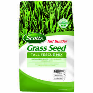 Scotts  Turf Builder  Tall Fescue  Grass Seed  3 lb.