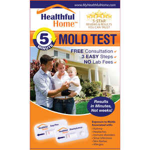 Healthful Home  Alexeter Technologies  Mold Test Kit  1 pk