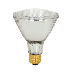 Satco  60 watts PAR30L  Floodlight  Halogen Bulb  1,090 lumens Warm White  1 pk